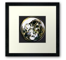 January in the Globe Framed Print