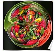 A bunch of tulip flowers in spherical Poster