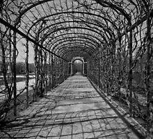Tunnel - B&W by Victor De Souza