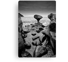 Stone sculpture Canvas Print