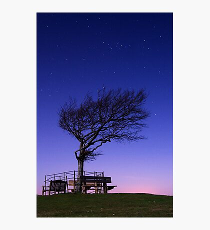 Moonlit Tree, Cleeve Common, The Cotswolds Photographic Print