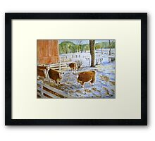 vermont cows Framed Print
