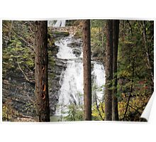 Sweet Creek Water Fall Poster
