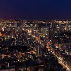 Red moon rising - Tokyo, Japan by hermez