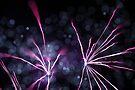 fireworks 12/9/15 by david gilliver