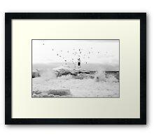 freezing gulls Framed Print