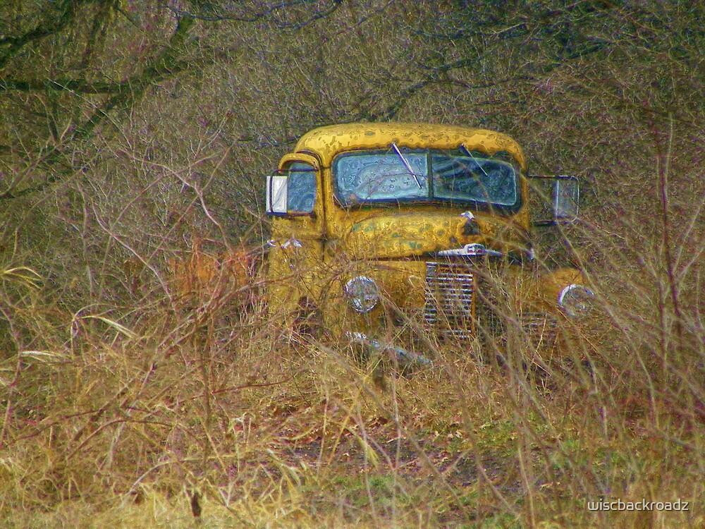Old Yeller by wiscbackroadz