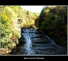 Buttermilk Falls  #1 by Rose Santuci-Sofranko