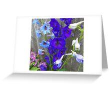 Pretty Delphinium Greeting Card