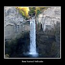 Taughannock Falls by Rose Santuci-Sofranko