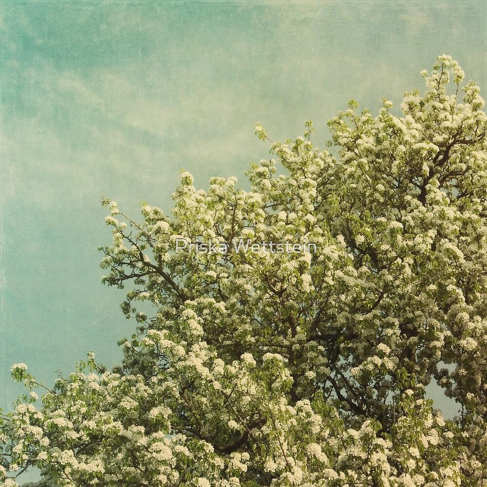 Resting under the prospering tree by Priska Wettstein