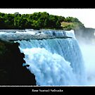 Niagara Falls - Oil Paint Effect by Rose Santuci-Sofranko