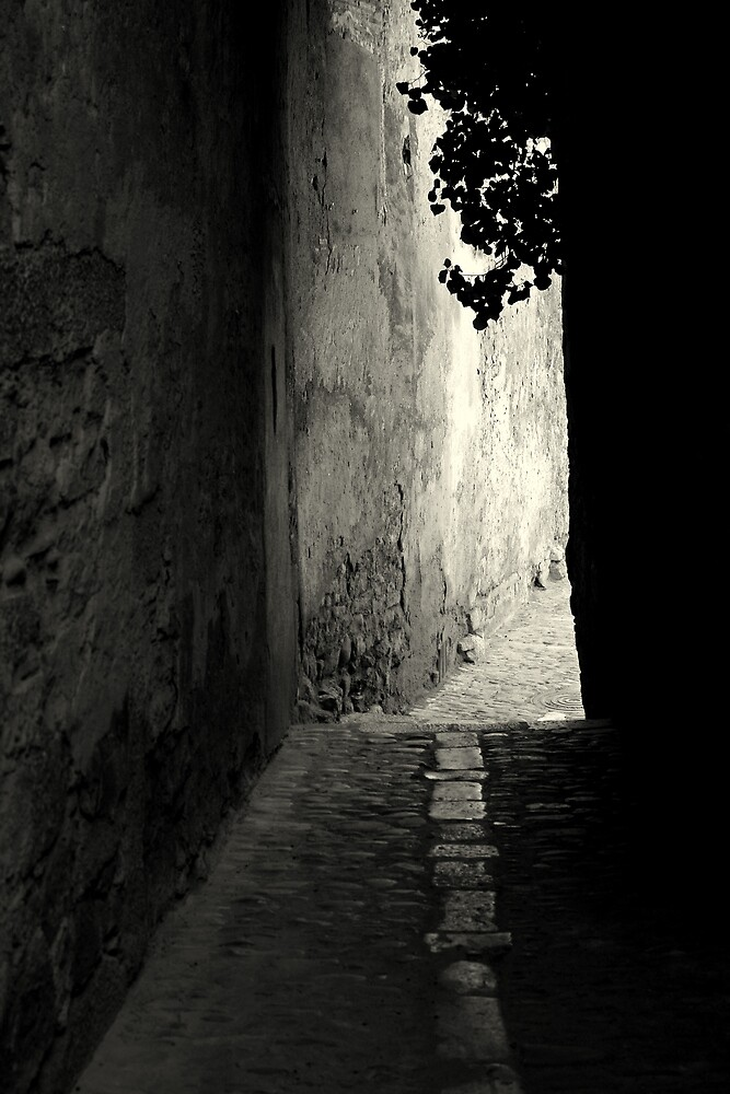 Down the alley by Esther  Moliné