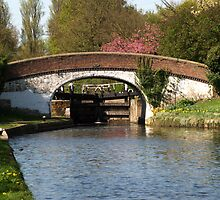 Black Jacks Bridge and Lock by Chris Day
