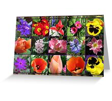 Glories of Spring Floral Collage in Mirrored Frame Greeting Card