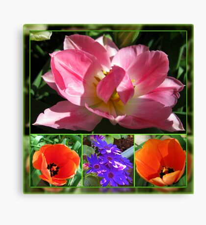 Dreamy Tulips Collage in Mirrored Frame Canvas Print