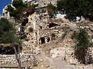 Ruins in Silwan Village, Jerusalem by Darren Stein