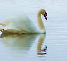 Serenity by Susie Peek