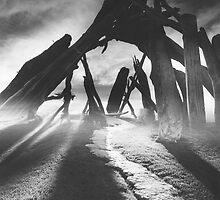 Driftwood Hut by Bob Bennett