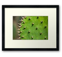 Thorny Baby Framed Print
