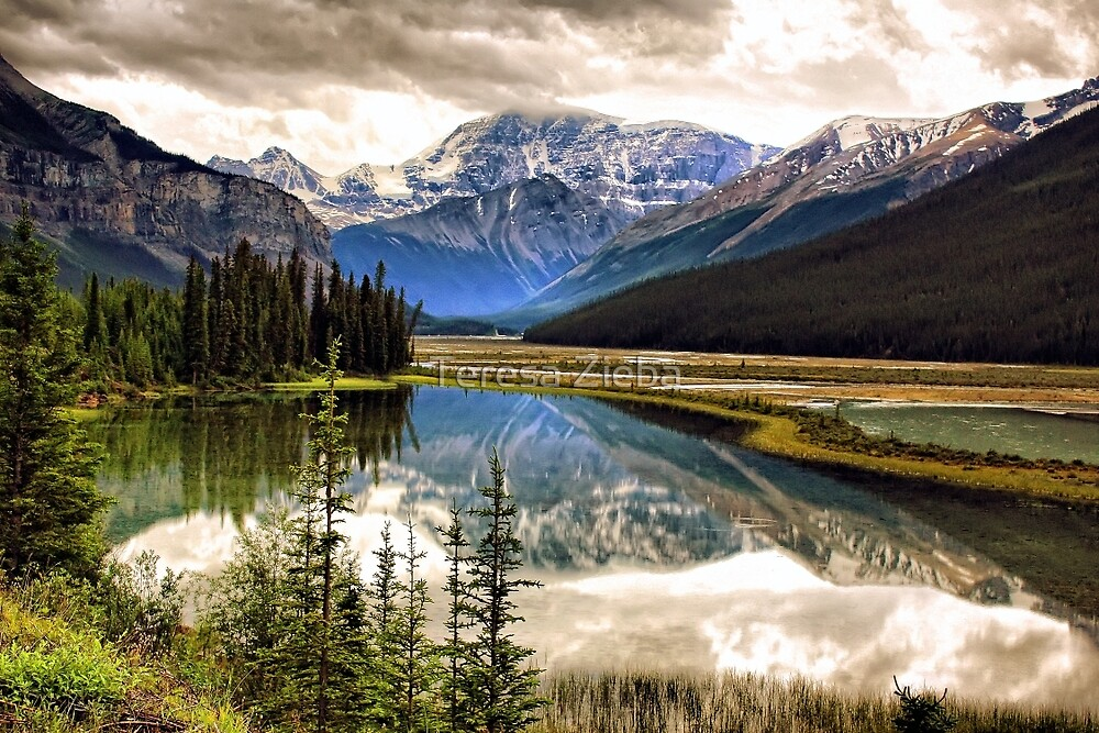 Along the Icefield Parkway, Jasper NP by Teresa Zieba