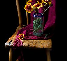 Spring Flowers 2 by Sue  Cullumber