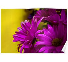 Beautiful Flowers of Ours Poster