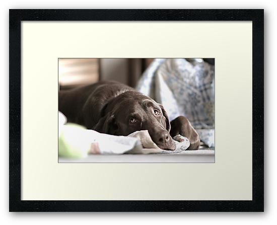 Jeter relaxing on the weekend by Mike Ciancio