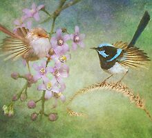 The Courtship by Trudi's Images