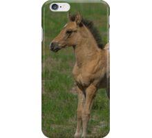 Beautiful Foal  iPhone Case/Skin