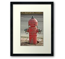 The INCHEON red hydrant robots Framed Print