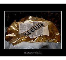 Alleluia!  Bible and sash Photographic Print