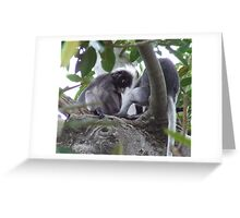 Mow Hawk Monkey Greeting Card