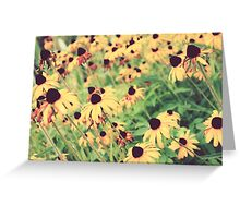 Rudbeckia - JUSTART ©  Greeting Card