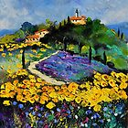 provence 561140 by calimero