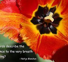 The Very Breath of Spring by anitahiltz