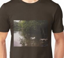 Cooling off in Austin, Texas Unisex T-Shirt