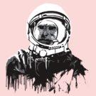 Space Chimp II by kprojekt