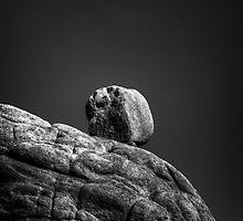 Top Rock by Bob Larson