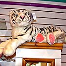White Tiger Display at Siegfried & Roys by RichardKlos