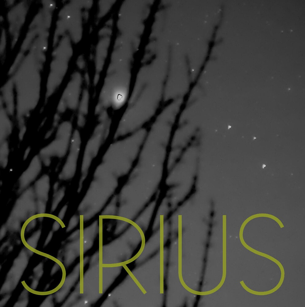 Sirius by brianfuller75