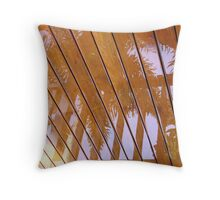 Rain Reflection Throw Pillow