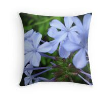 Wysteria Lane Throw Pillow