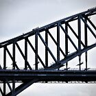 Mad people on Sydney Harbour Bridge by Bev Short