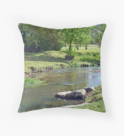 Little Cahaba River Throw Pillow