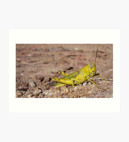 Lemon Hopper Art Print