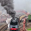 The Goathland Express by almaalice