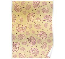 Ammonites in pink Poster