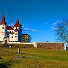 Castle Läckö  by julie08
