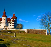 Castle Läckö  by julie08